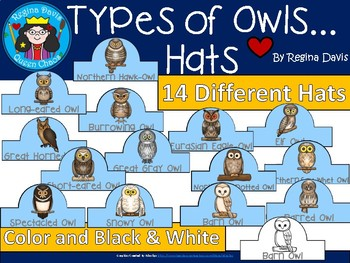 A+ Owls: Different Types... Hats