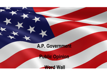 A.P. Government Word Wall: Public Opinion