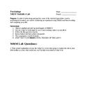 A.P. Psychology M&M Statistics Lab