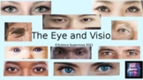 A & P: The Eye and Vision PPT w/Student Note Taking Guide