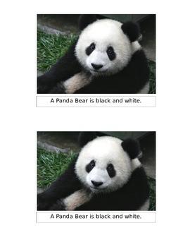 A Panda Bear Emergent Reader