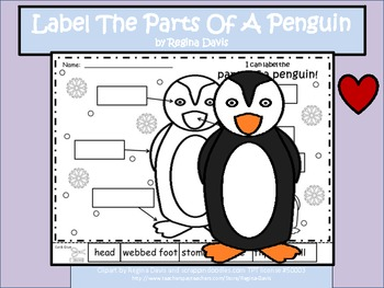 a penguin label the parts of the penguin by regina davis teachers pay teachers. Black Bedroom Furniture Sets. Home Design Ideas