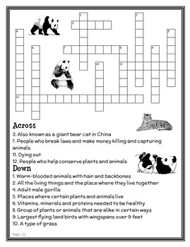 A Perfect Time for Pandas | Pandas and Other Endangered Species : MTH BUNDLE