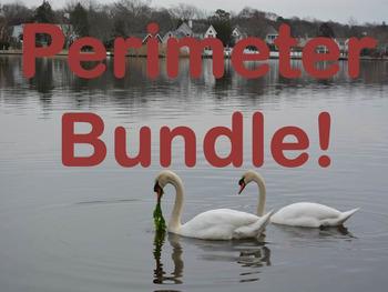 A Perimeter Unit A 3rd Grade Wonder