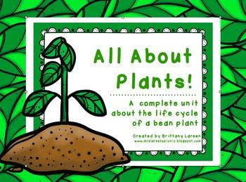 A Plant Unit for Kindergarten