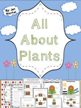 A Plant's Life Cycle ( a cross- curricular unit)