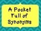 A Pocket Full of Synonyms