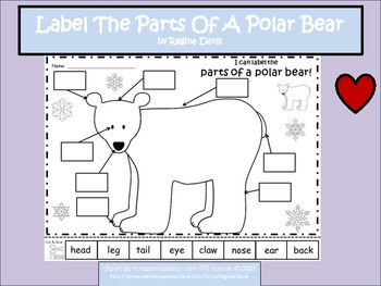 Parts of a Polar Bear Worksheet by Miss Amy Lynn | TpT