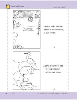A Pond: Take-Home Book