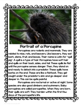 A Porcupine Named Fluffy Book Study