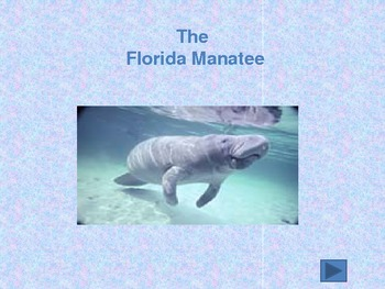 A PowerPoint Lesson on The Florida Manatee