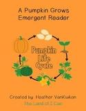 A Pumpkin Grows Emergent Reader
