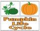 A Pumpkin Life Cycle Nonfiction Writing Unit