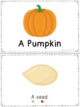 A Pumpkin - a leveled reader & activities