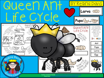 A+ Queen Ant Life Cycle Labeling & Word Wall