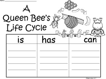 A+ Queen Bee's Life Cycle ...Three Graphic Organizers