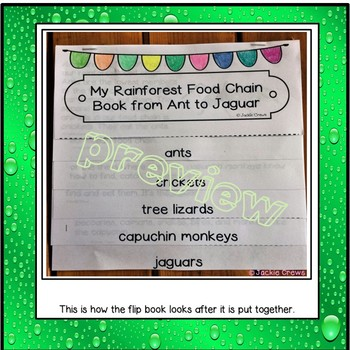 A RAINFOREST FLIP BOOK from ANT TO JAGUAR w/CRAFT