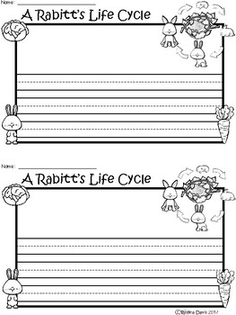 A+ Rabbit Life Cycle ... Writing Paper