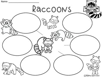 A+ Raccoons... Three Graphic Organizers