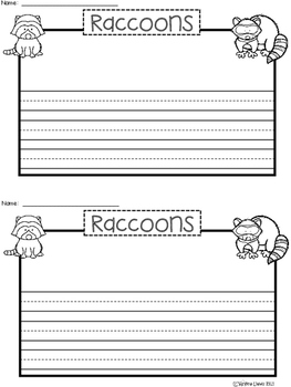 A+ Raccoons ... Writing Paper