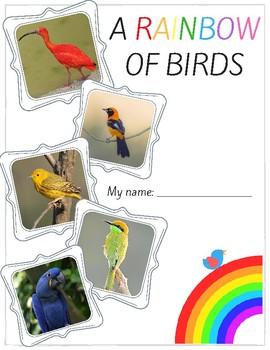 A Rainbow of Birds!