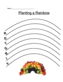 A Rainbow of Healthy Choices Worksheet