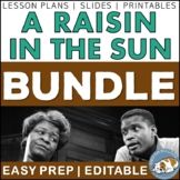 A Raisin in the Sun Activity Mini Bundle