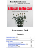 A Raisin in the Sun Assessment Pack
