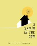 A Raisin in the Sun Poster (16x20)