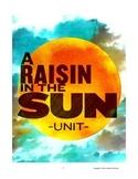 """""""A Raisin in the Sun"""" Complete Unit"""