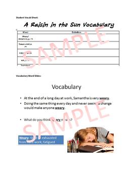 A Raisin in the Sun Vocabulary Materials: Vocab Sheet, Slides, Drills, Quiz