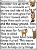 A+ Reindeer Comprehension:Differentiated Instruction For G