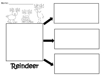 A+ Reindeer:  Graphic Organizers