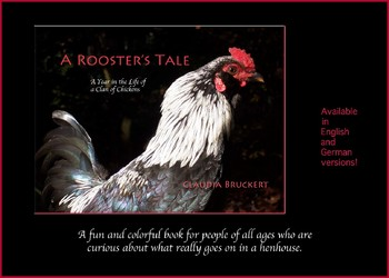 A Rooster's Tale. A year in the life of a clan of chickens.