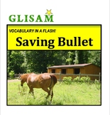 VOCABULARY IN A FLASH short story: SAVING BULLET (Lexile 860)