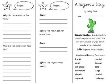 A Saguaro's Story Trifold - Open Court 3rd Gr Unit 4 Lesson 2