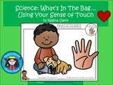 A+ Science: What's In The Bag...Using Your Sense of Touch Recording Sheet