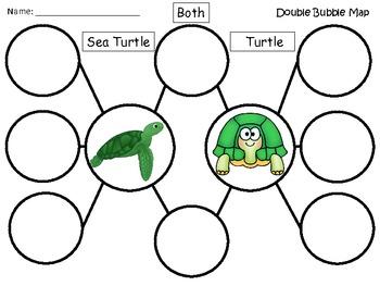 A+ Sea Turtle & Turtle:  Double Bubble Maps