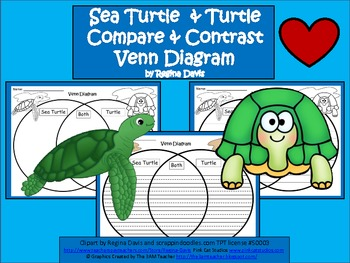 A+ Sea Turtle & Turtle Venn Diagram...Compare and Contrast
