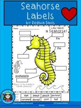 A+ Seahorse Labels