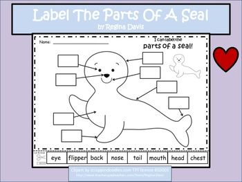 A+ Seal: Label The Parts Of The Seal