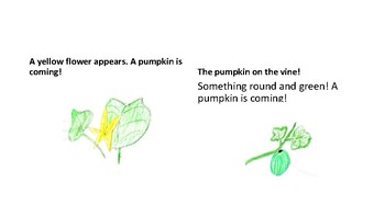 A Season of Stories Book 2 Pumpkin on the Vine