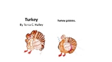 A Season of Stories: Fall to Winter- book 3 Turkey