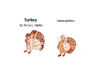 A Season of Stories: Turkey by Tonia C. Halley