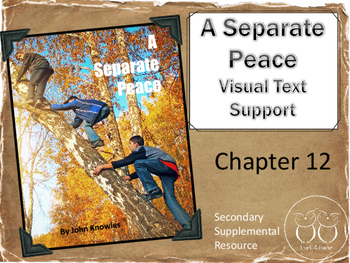 A Separate Peace: Chapter 12 Visual Text Support