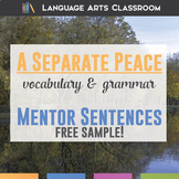 A Separate Peace Chapter One Grammar and Vocabulary FREE SAMPLE