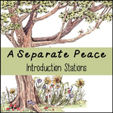 A Separate Peace Introduction Stations: A Fun Way to Introduce the Novel!