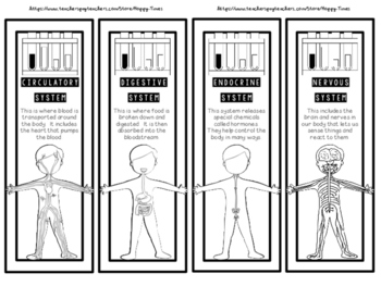 A Set of 24 HUMAN BODY SYSTEMS Bookmarks (skeletal, digestive, nervous, etc.)