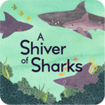 A Of Sharks Collective Nouns