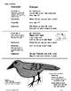 """A Short Skit About """"Scaring the Crow"""""""